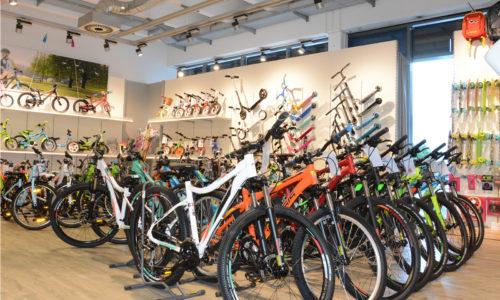 Bike und E-Bike